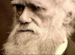 LA LUZ DE DARWIN