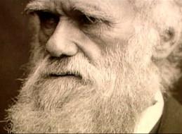 EXPOSICIÓN LA LUZ DE DARWIN EN LOBOSILLO