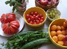 Nutrición y dietética. Dieta Saludable