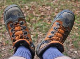 Introducción al senderismo y actividades de montaña